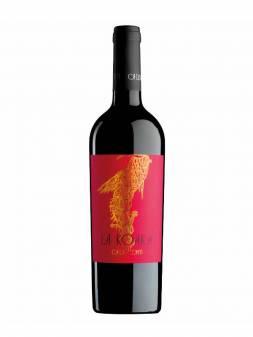 Gris Pinot Grigio